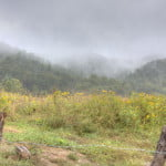 A Smokey Day At Cades Cove - Great Smoky Mountains National Park Near Gatlinburg, TN