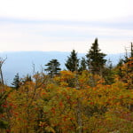 A View From Clingman's Dome, Great Smoky Mountains National Park Near Gatlinburg, TN